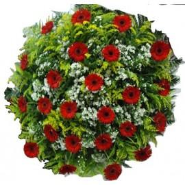 Coroa Fúnebre 24 Gérberas