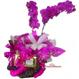 Orquídea Especial Na Cesta Com Ferrero