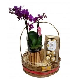 Orquídea Mini Com Ferrero