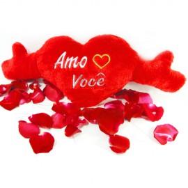 Almofada (P) Amo Você